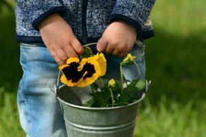 Apprendre aux enfants à jardiner